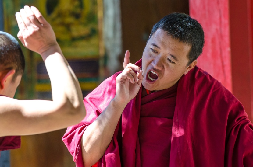 Photo Gallery: The Sera Monastery debate
